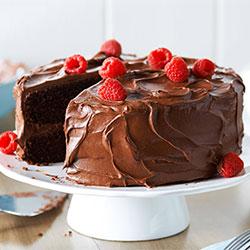 https://www.nikkiflower.com/images/cake-chocolate.jpg
