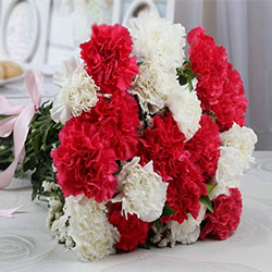https://www.nikkiflower.com/images/flower-carnations.jpg
